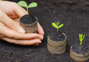 Human Planting Three Trees